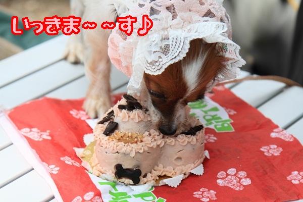 2011_08_18 西湖 ブログ用DPP_0070