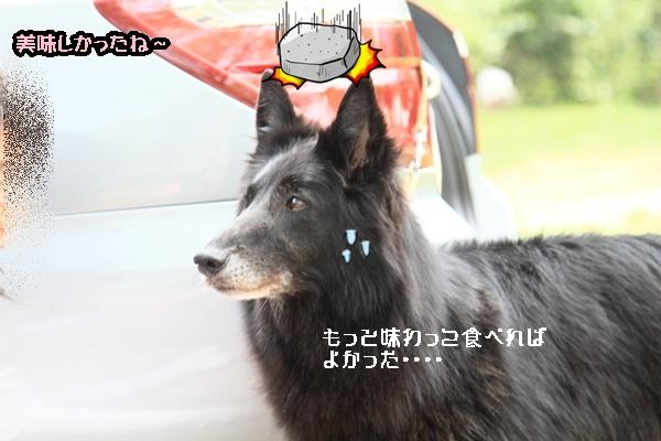 2011_08_18 西湖 ブログ用DPP_0082