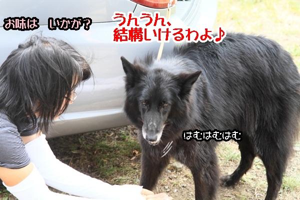2011_08_18 西湖 ブログ用DPP_0079