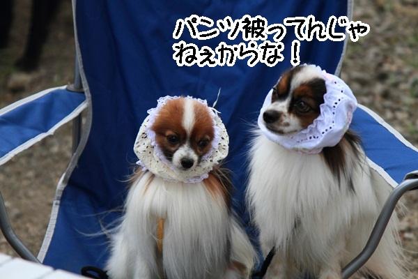 2011_08_18 西湖 ブログ用DPP_0067