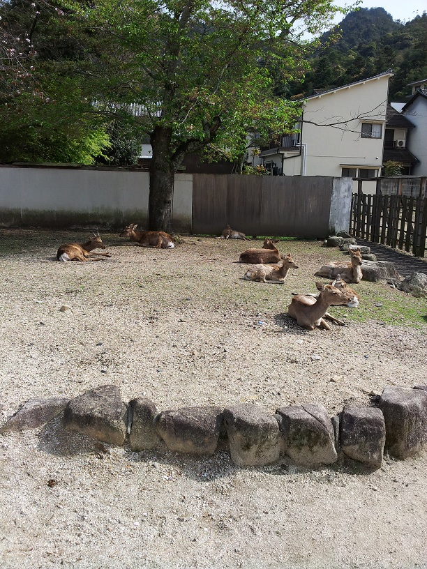 広島旅行 (24)