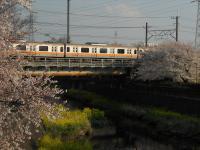 DSCN4313m.jpg