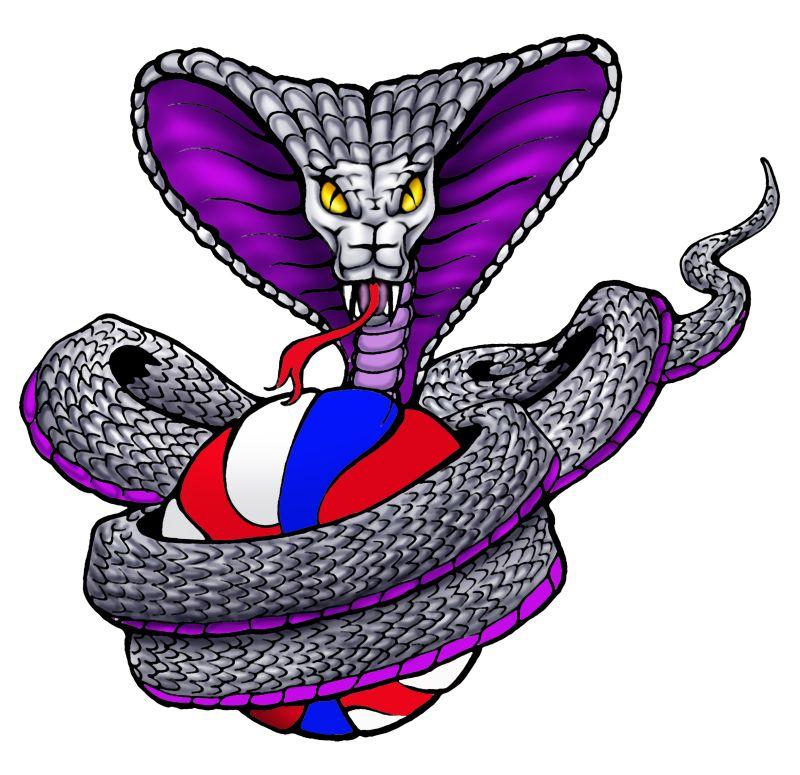 cobras_logo.jpg