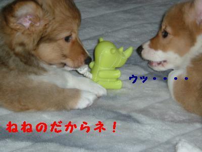 蟷ウ蜷峨→縺ュ縺ュ+057_convert_20110613165201