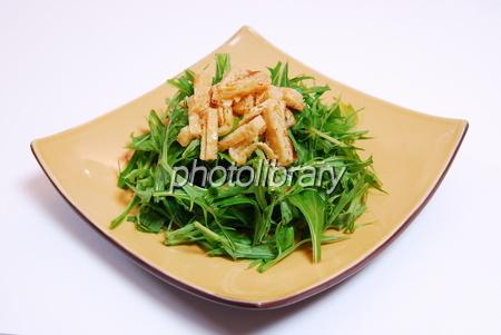 840860 水菜サラダ