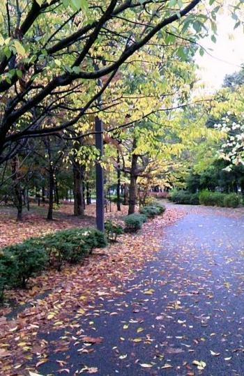 木場公園_convert_20111223213722