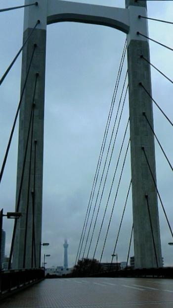 橋とツリー_convert_20111223213904