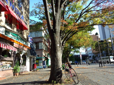 ぐるっと横浜