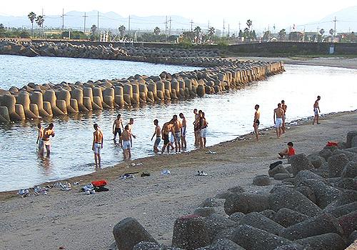 kaki_zenkoku_beach_blog.jpg