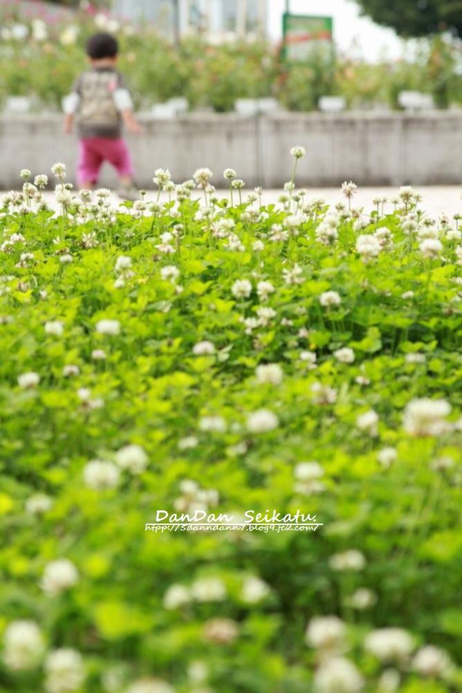 blog_7364 (1)
