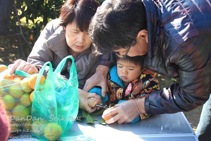blog_2011_11_26_4101.jpg