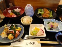 shinoha1101b.jpg