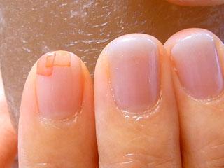 pum爪5