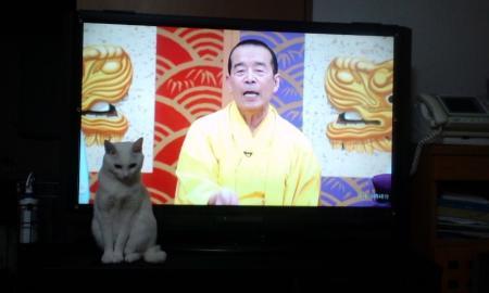 テレビ~来た!!