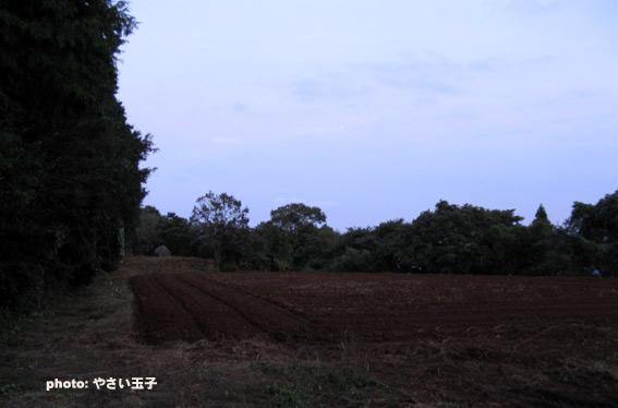 IMG_6099.jpg