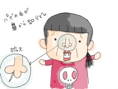 haetori8.jpg