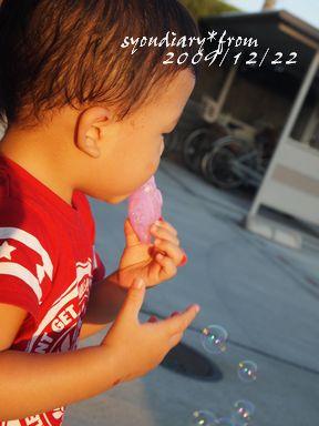 P9084083.jpg