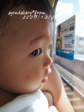 P9114103.jpg