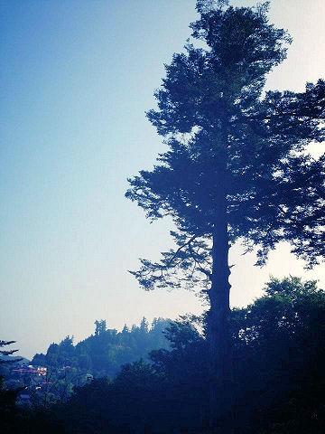 20130814御岳山6