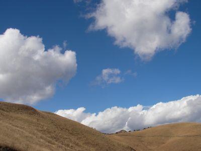 20101126-2.jpg