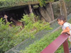 台北動物園3