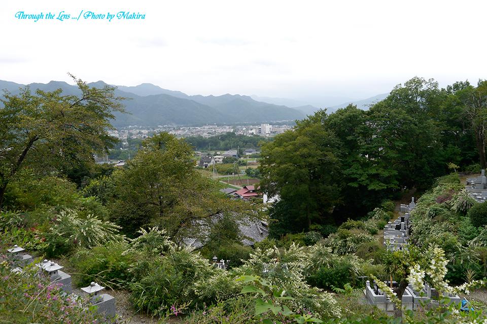 萩山山頂L2