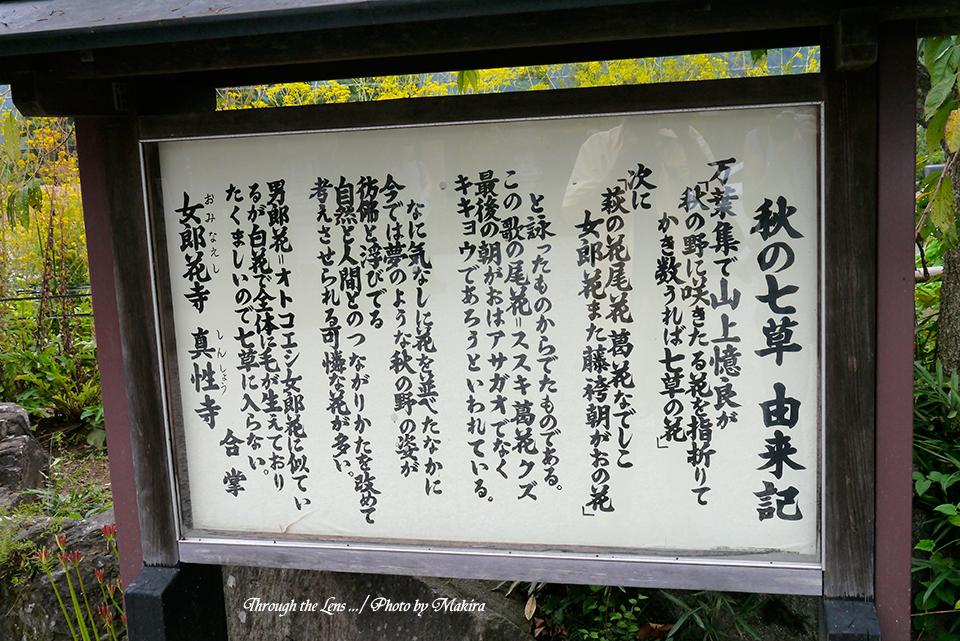 秋の七草由来記L