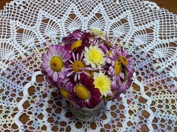 マーガレット摘花