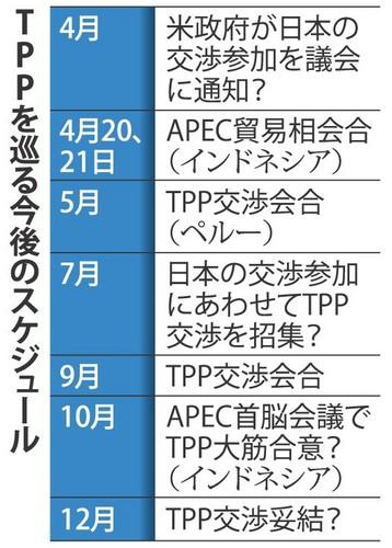 TPPをめぐる今後のスケジュール