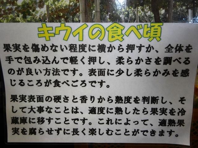 23_201409271020323c0.jpg