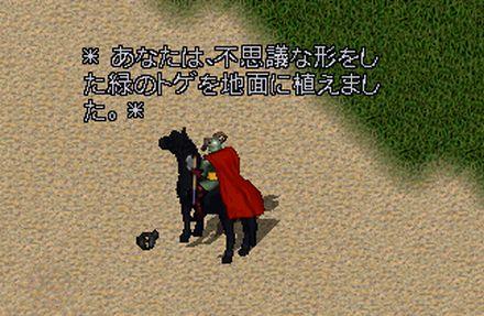 2010000540.jpg