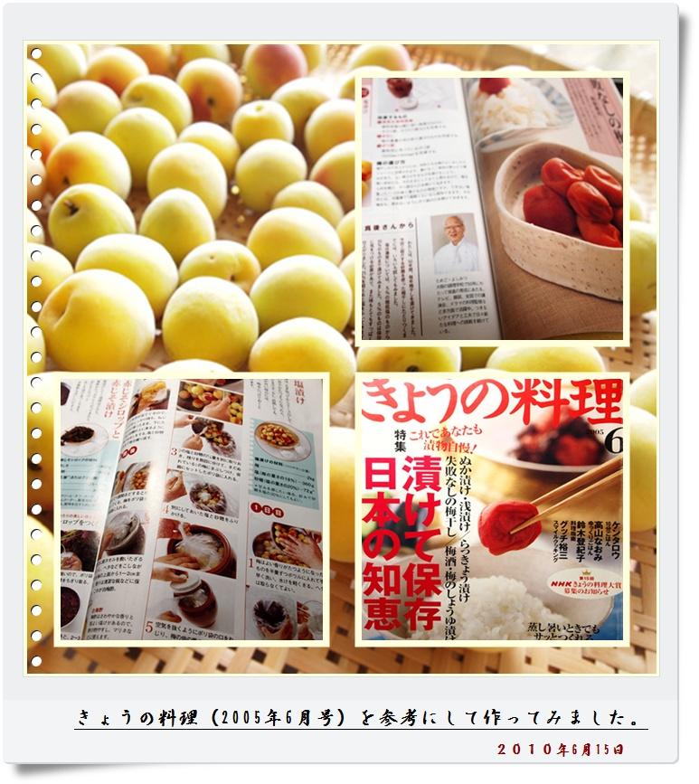 umeboshi0615.jpg