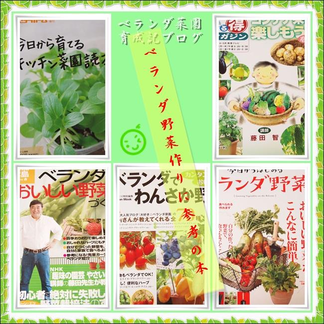 vegetable0603.jpg
