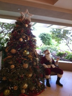 Hilton christmas