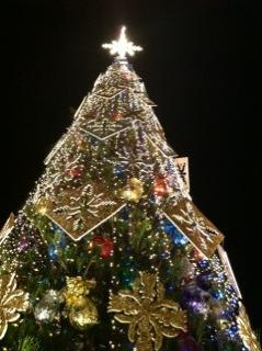 tree_20111228141720.jpg
