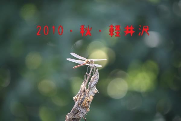 IMG_6399のコピー