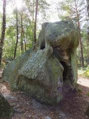 芸術的な岩の造形