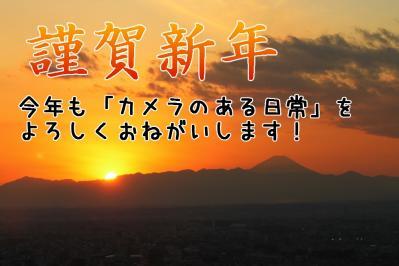 IMG_9158-newyear.jpg