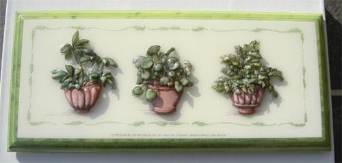 鉢植えブログ4