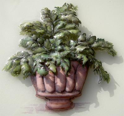 鉢植えブログ2