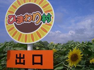 20110730ひまわり村 026