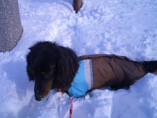 雪 012