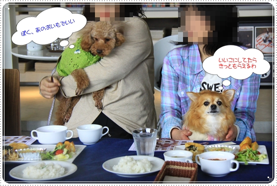 2012,4,16わんわん倶楽部オフ会6