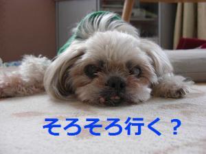 011_20130322212959.jpg