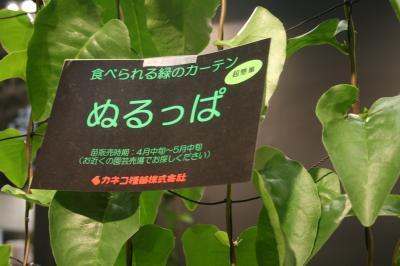 526_convert_20100329181441.jpg
