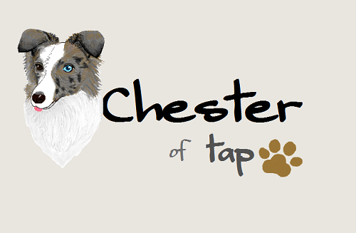 Chester paint2