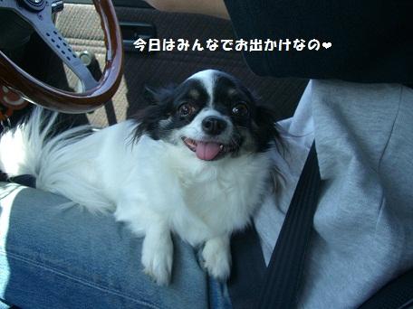 2010_0503_122801-CIMG4293buro.jpg