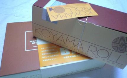 koyama 1