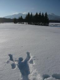 雪に倒れる