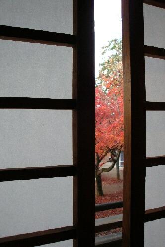 京都紅葉2008